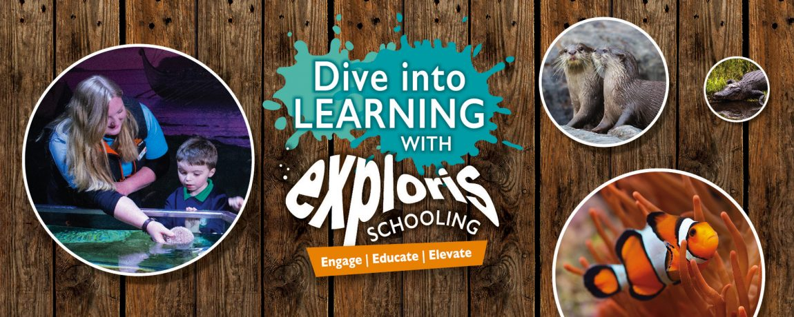 Exploris Education Slider 1900x760px_Foundation