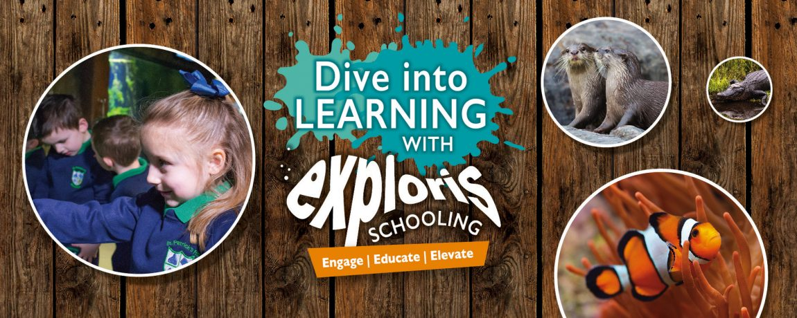Exploris Education Slider 1900x760px_KS1