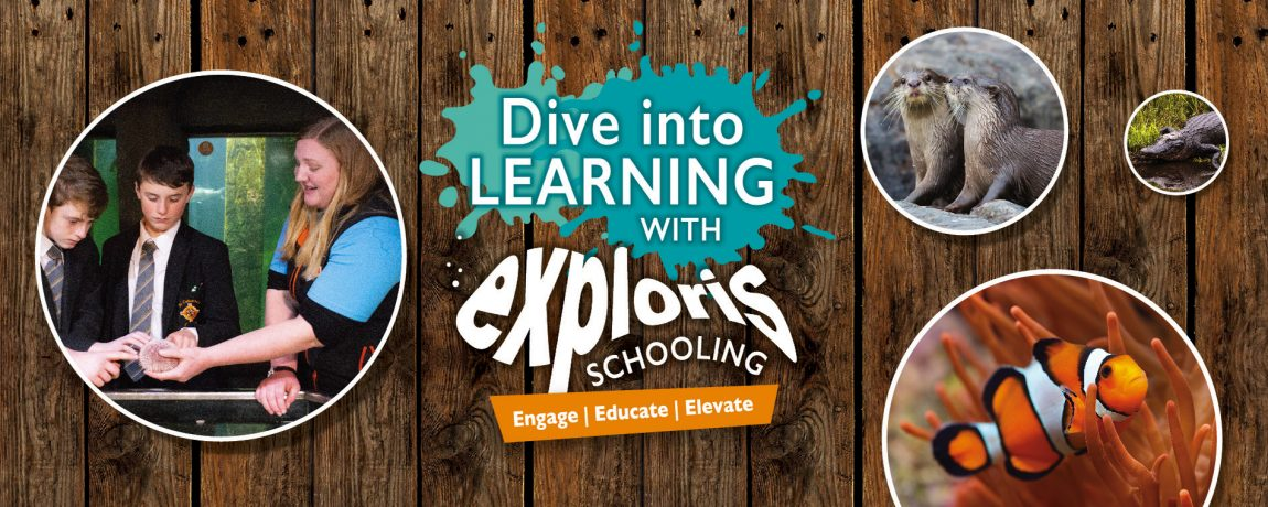 Exploris Education Slider 1900x760px_KS3
