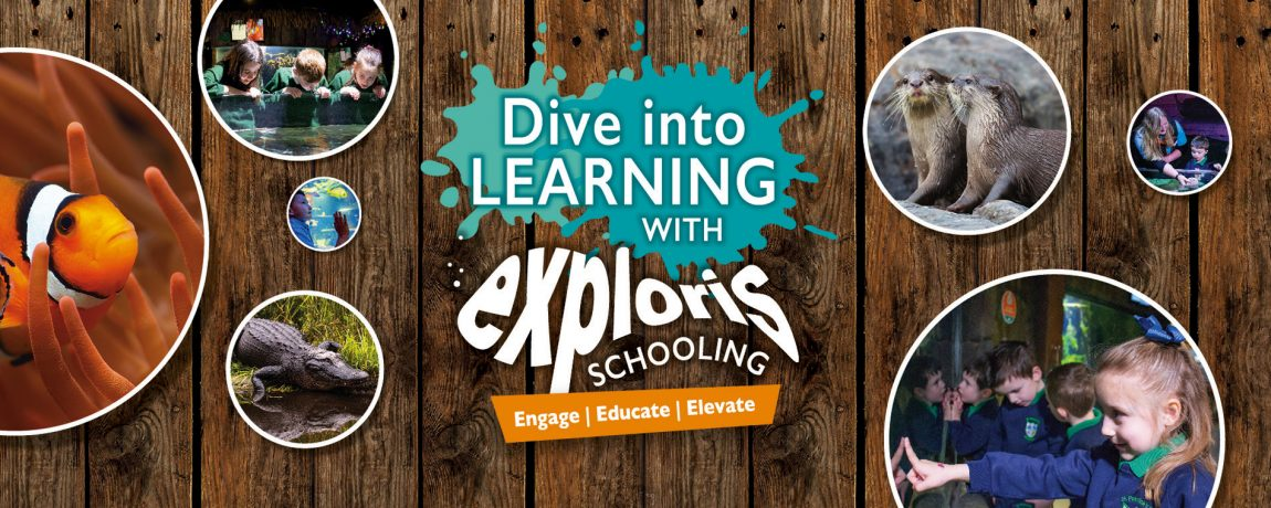 Exploris Education Slider 1900x760px_Logo